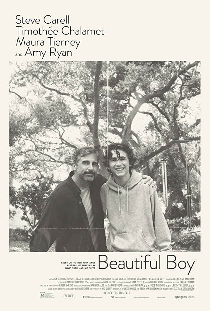 Beautiful Boy IMDb Movie Poster