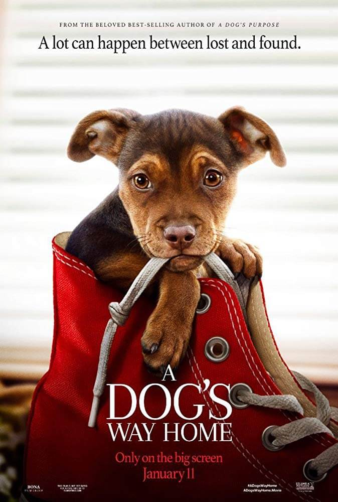 A Dog's Way Home IMDb Movie Poster