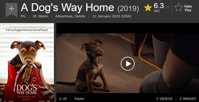 A Dog's Way Home IMDb Ratings and Reviews